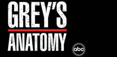 Anatomia lui Grey: Sezonul 8 + Video