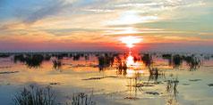 Pescuit In Delta Dunarii: Sulina