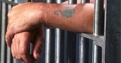 Fertilizare In Vitro Pentru Detinuti